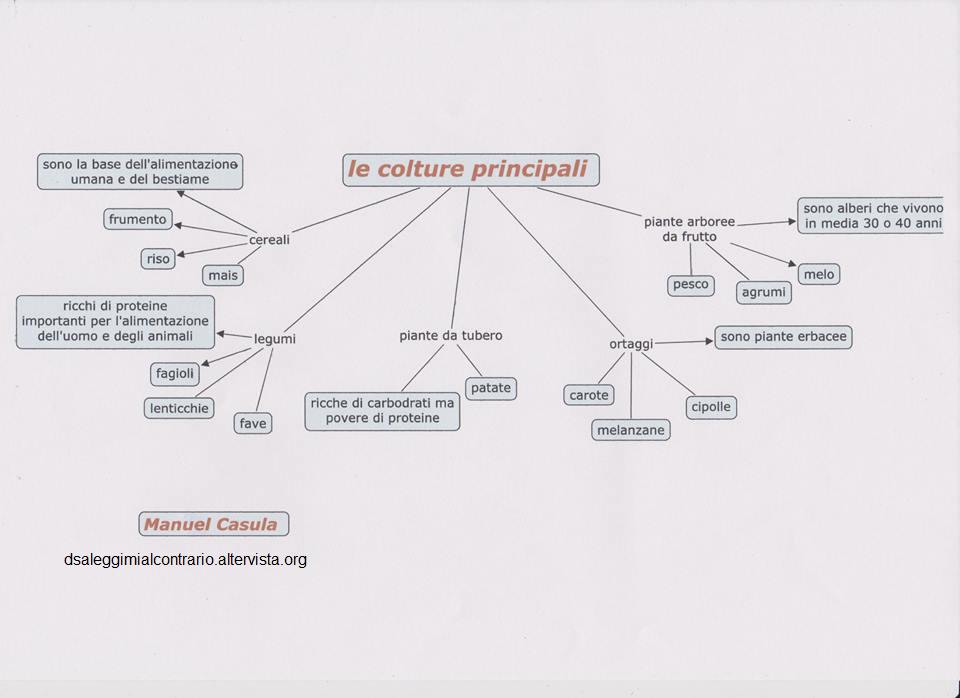 culture principali